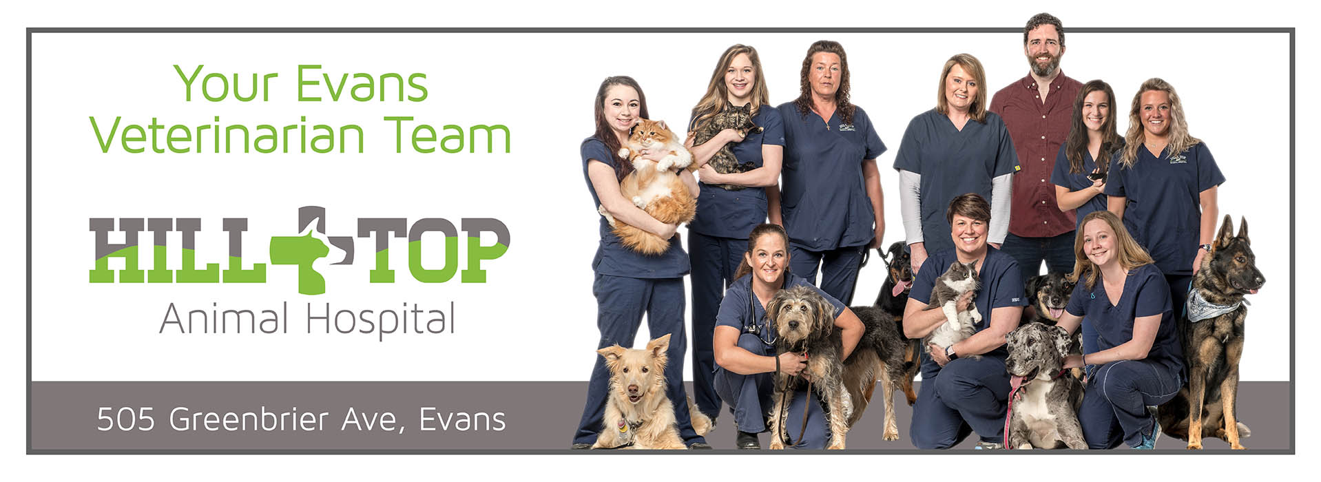 Your Evans Veterinarian Team at Hill Top